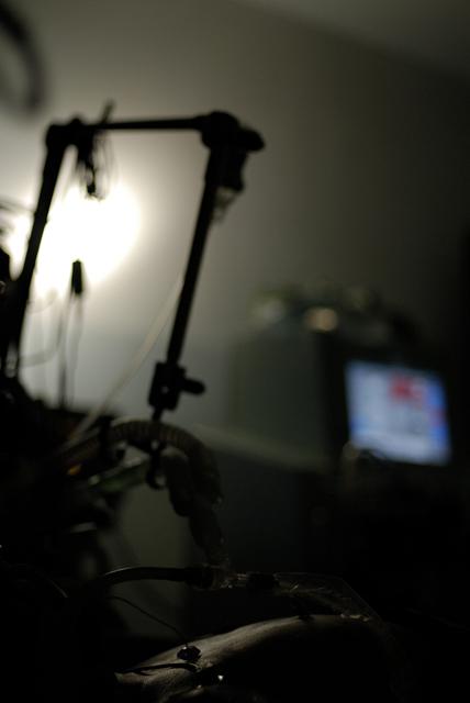 Nottidiguardia ultiva for Case del seminterrato di luce del giorno